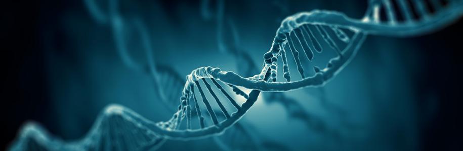 Genetyka może mieć duży wpływ na naszą potliwość.